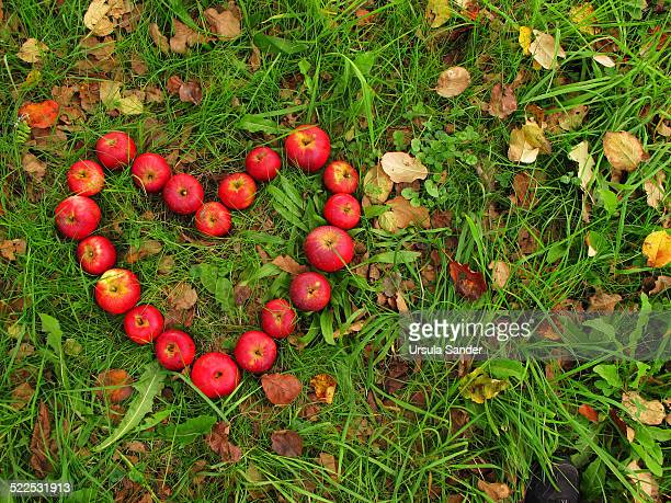 Heart shape of apples