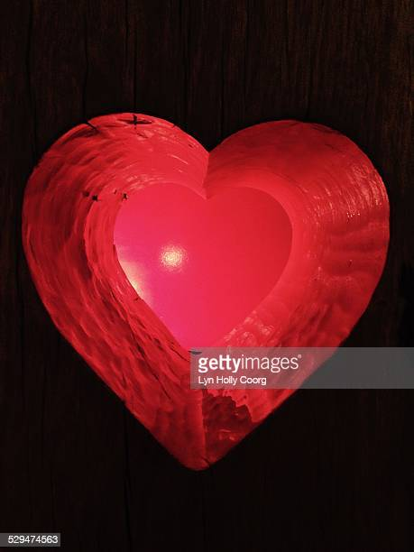 heart shaped! - lyn holly coorg imagens e fotografias de stock