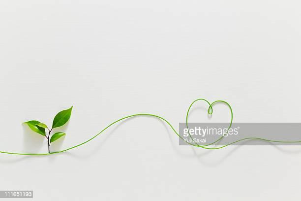 Heart shaped strings