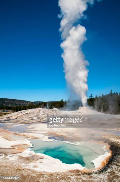 Heart Springs, Lion Geyser Group, Yellowstone National Park