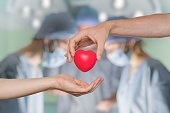 Heart transplant and organ donation concept. Hand is giving red heart.