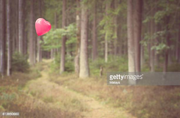 Heart-shaped balloon in the Woods