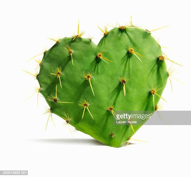 Heart-shaped cactus pad