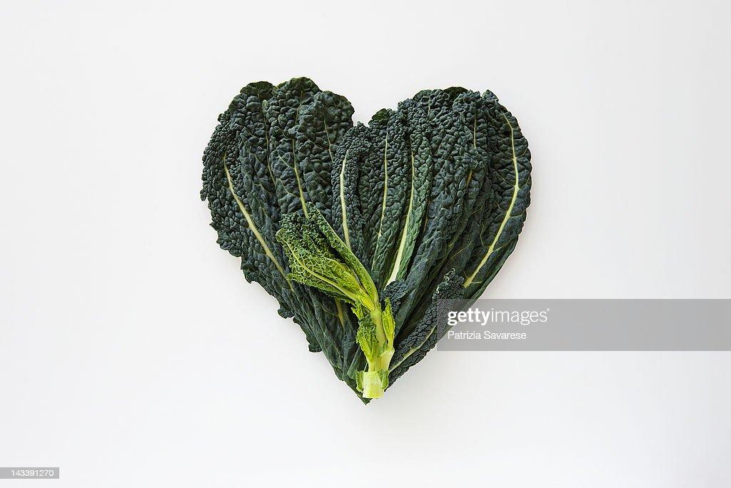 Heart-shaped formed by fresh Black Kale : Foto de stock