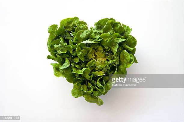 heart-shaped formed by fresh lettuce - lettuce stock pictures, royalty-free photos & images
