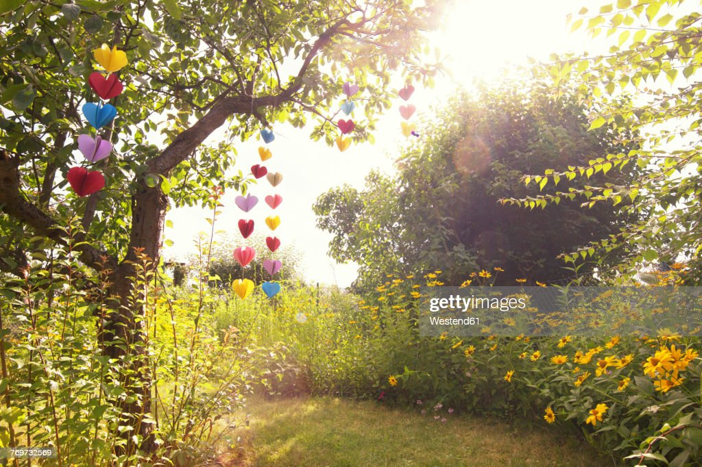 Heart-shaped garland made of paper hanging in garden : Stock Photo