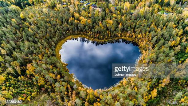 heart-shaped lake surrounded by forest - miljöbevarande bildbanksfoton och bilder