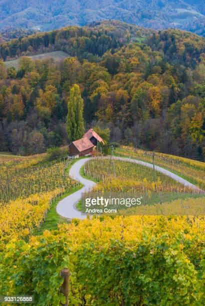 Heartshaped road. Spicnik, Kungota, Drava region, Slovenia