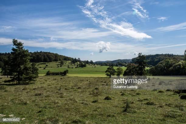 heath and hills