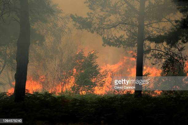 Heath fire rages behind the tenth tee area that caused play to be suspended during day three of The Rose Ladies Series on The West Course at...
