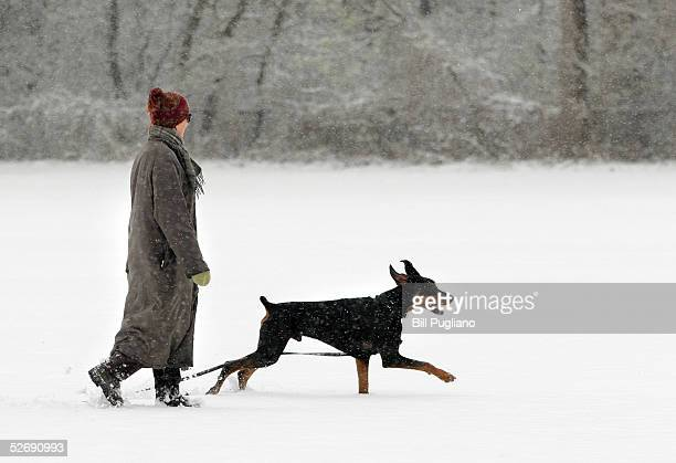 Heather Armbruster of Birmingham, Michigan, plays with her dog, Lyndobe's Emmanue, during a late spring snowstorm April 24, 2005 at Cranbrook School...