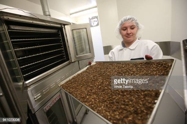 Heather ClementsEmmerson production worker of Entomo Farms which mass produces cricket powder for retail removes freshly roasted crickets from the...