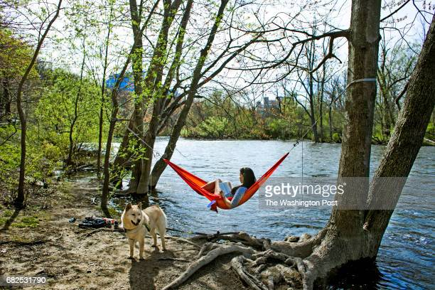 Heather Hennrick of Ypsilanti, enjoys a book while resting in her hammock, at the Nichols Arboretum in Ann Arbor, Mich., on Tuesday, April 25, 2017....