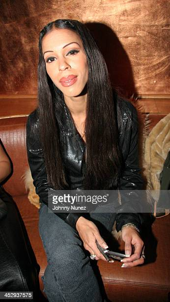 Heather Hunter during Wendy Williams presents Dons and Diva's Black Party Hosted by Mary J Blige Inside at Crobar in New York City New York United...
