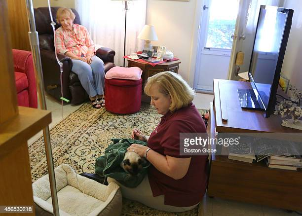 Heather Merrill founder and director of New England Pet Hospice Home Care visits Pie in Medway Mass on September 22 2014 She administers subcutaneous...