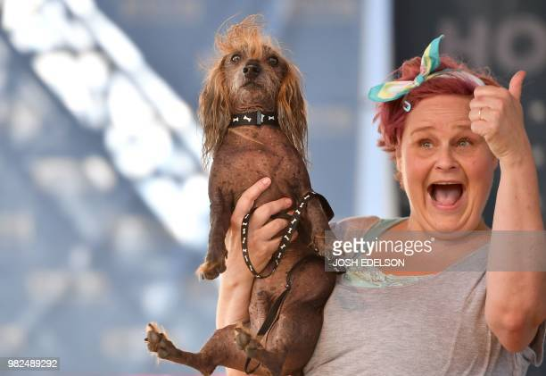 Heather Wilson holds up her dog Himisaboo a Chinese Crested Wiener Dog mix during The World's Ugliest Dog Competition in Petaluma north of San...