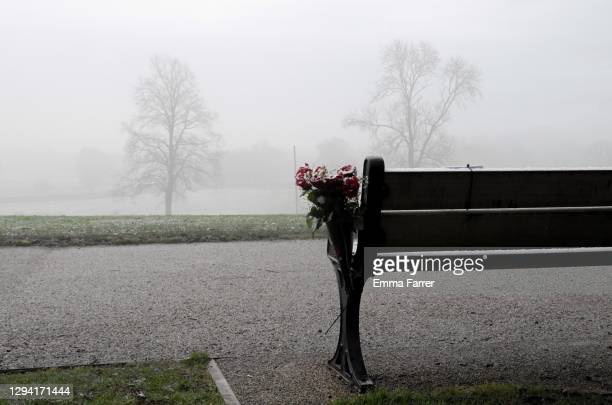 heaton park in manchester during tier 4 lockdown - quiet and foggy - manchester england stock pictures, royalty-free photos & images