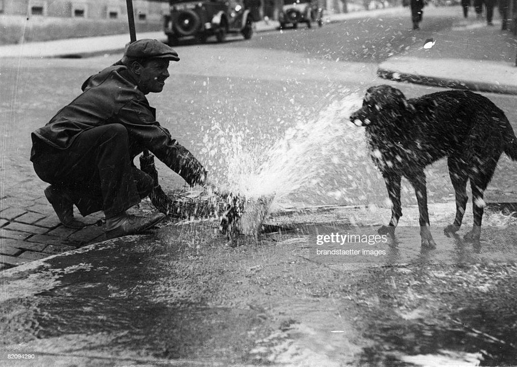 A man hoses down his dog with water, Photograph, Around 1935 (Photo by Imagno/Getty Images) [Hitzwelle in Paris: Ein Mann spritzt seinen Hund mit Wasser ab, Photographie, Um 1935]