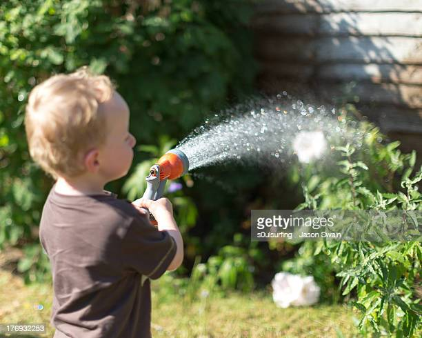 heatwave - watering the garden - s0ulsurfing stock pictures, royalty-free photos & images