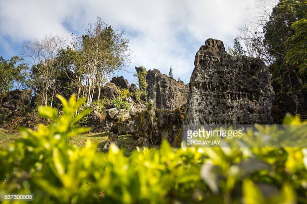 heaven gate of ham rong mountain in sapa - heavens gate cult stock pictures, royalty-free photos & images