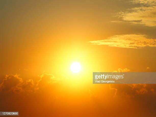heaven scent - sunlight stock pictures, royalty-free photos & images