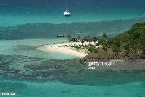 Heavenly landscape at Tobago Cays; West Indies; Caribbean, aerial view over the small islands and the turquoise sea