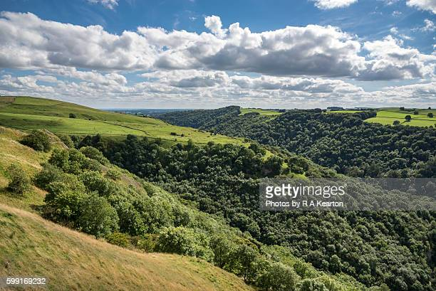 Heavily wooded slopes in Dovedale, Peak District national park