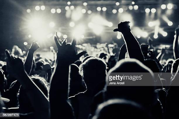 Heavy Metal Concert Pit