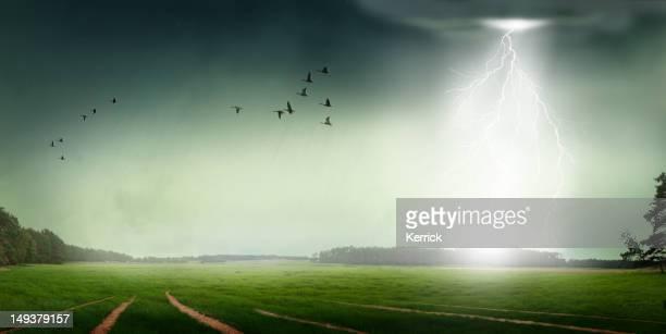 大雨、雷ストローク