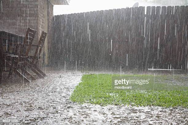 heavy rain in backyard - rain stock pictures, royalty-free photos & images