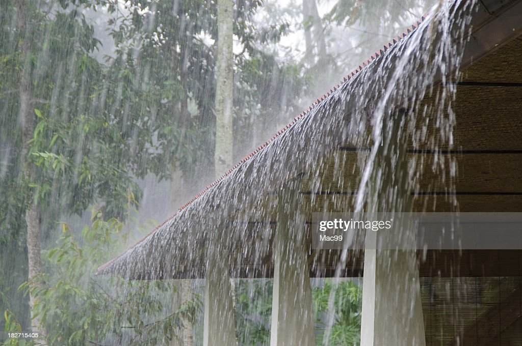 Heavy Rain : Stock Photo