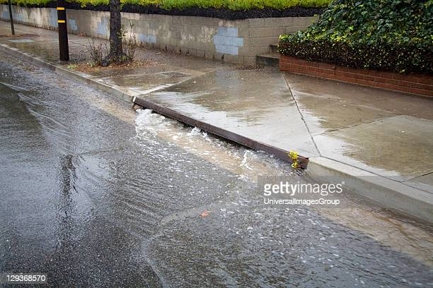 Heavy rains flow down streets into Street Gutters and Storm Drains and eventually Ballona Creek a ninemile waterway that drains the Los Angeles basin...
