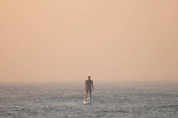 AUS: Fog And Smoke Haze Blanket Sydney