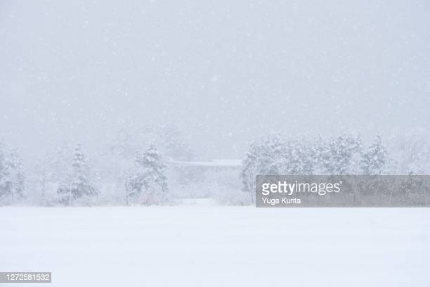 heavy snow in a rural village - deep snow stock pictures, royalty-free photos & images