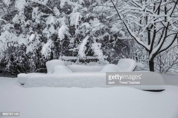 Heavy snow in the garden