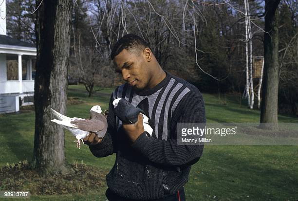 Casual portrait of Mike Tyson holding pigeons in each hand at the home of his surrogate mother Camille Ewald Catskill NY 12/1/1985 CREDIT Manny Millan