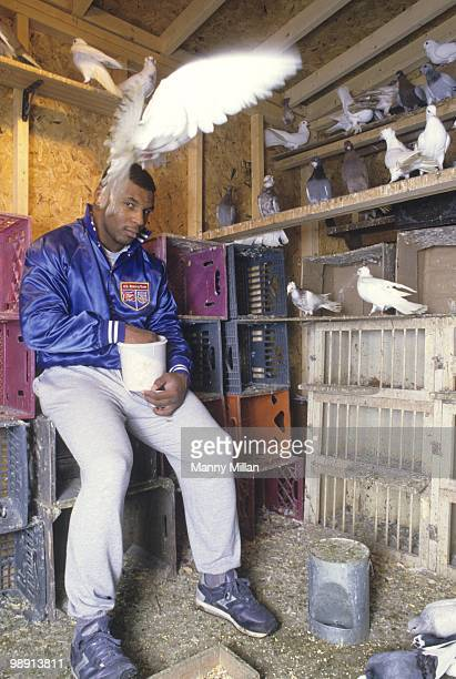 Casual portrait of Mike Tyson inside of his pigeons coup at the home of his surrogate mother Camille Ewald Catskill NY 12/1/1985 CREDIT Manny Millan