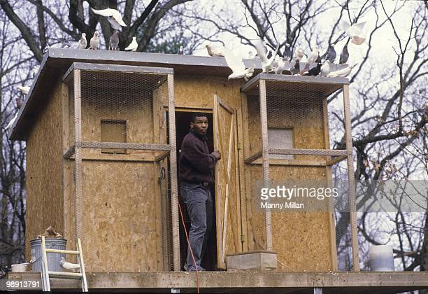 Casual portrait of Mike Tyson outside of his pigeons coup at the home of his surrogate mother Camille Ewald Catskill NY 12/1/1985 CREDIT Manny Millan