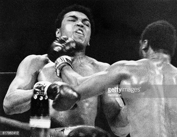 Heavyweight Champion Boxer Joe Frazier punches Muhammad Ali's face in the final round of their Heavyweight title fight. Frazier dumped Ali for an...