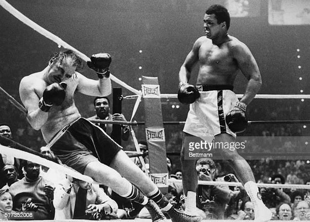 Heavyweight champion Muhammad Ali watches his opponent, Chuck Wepner , after knocking him against the ropes in the fifteenth round of their...