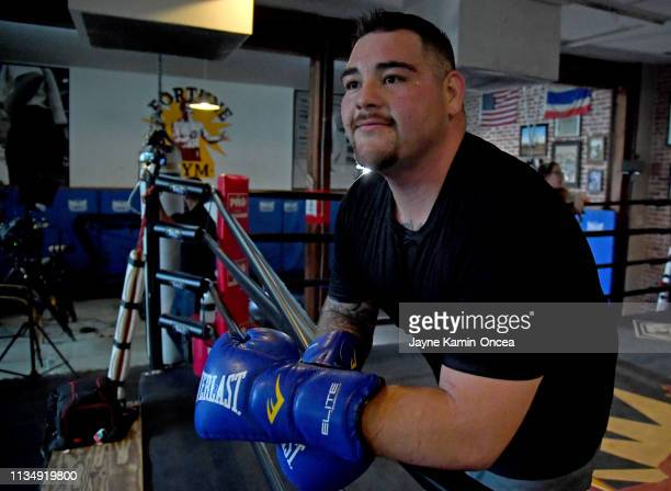 Heavyweight Contender Andy Ruiz Jr takes a break in the ring during a media day workout for his upcoming fight against Alexander Dimitrenko at...