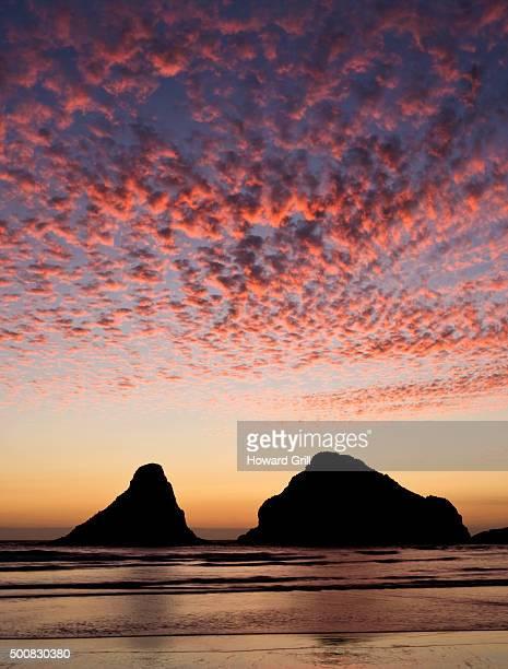 Heceta Beach, Oregon, USA, Sea Stacks Vertical Composition