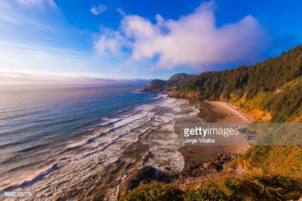 heceta head lighthouse on the oregon coastline - coastline stock pictures, royalty-free photos & images