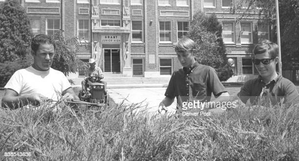 Hedge Clipping Is Part Of The Littleton School Beautification Rob Nickels 708 W Berry Ave left instructs Phil Carmody 257 E Powers Ave center and...