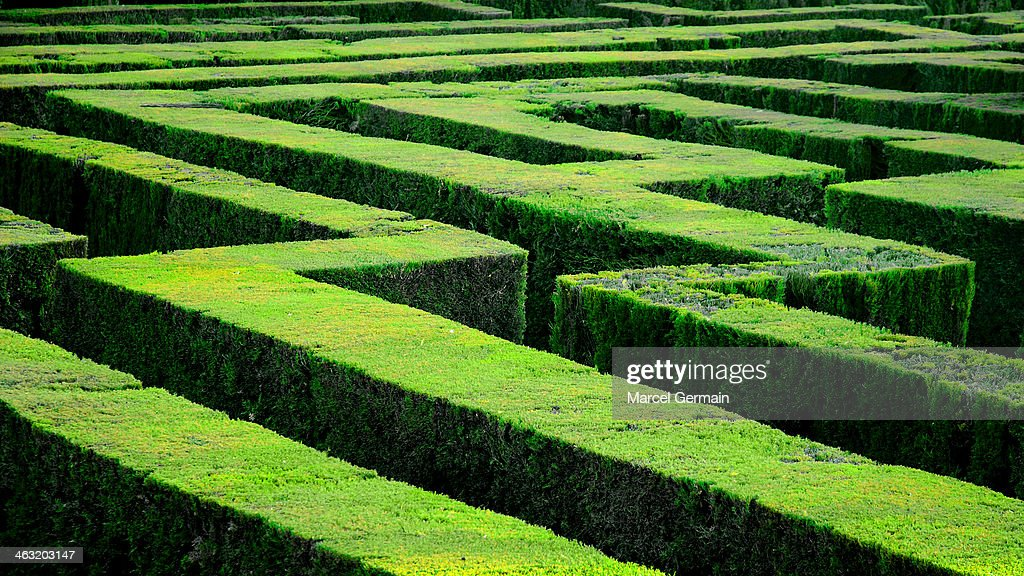 Hedge maze in Barcelona (Laberint d'Horta) : Stock Photo