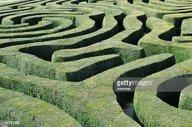 hedge maze - complicated stock photos and pictures
