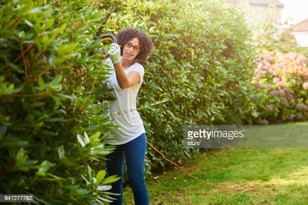 hedge trimming - hedge stock pictures, royalty-free photos & images