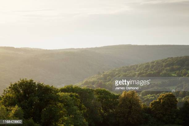 hedgerows, trees and wooded hills receding into the distance. - valley stock pictures, royalty-free photos & images