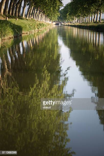 Hedges plane reflected in the Canal du Midi