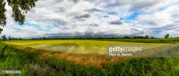 heho - myanmar stock pictures, royalty-free photos & images
